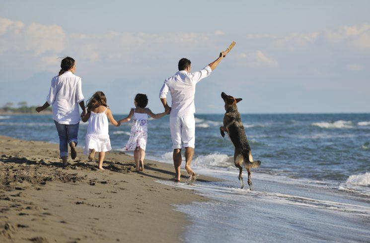 права родителей по отношению к детям